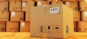 Oasis storage boxes